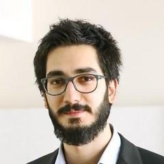 S. Hossein Nabavi